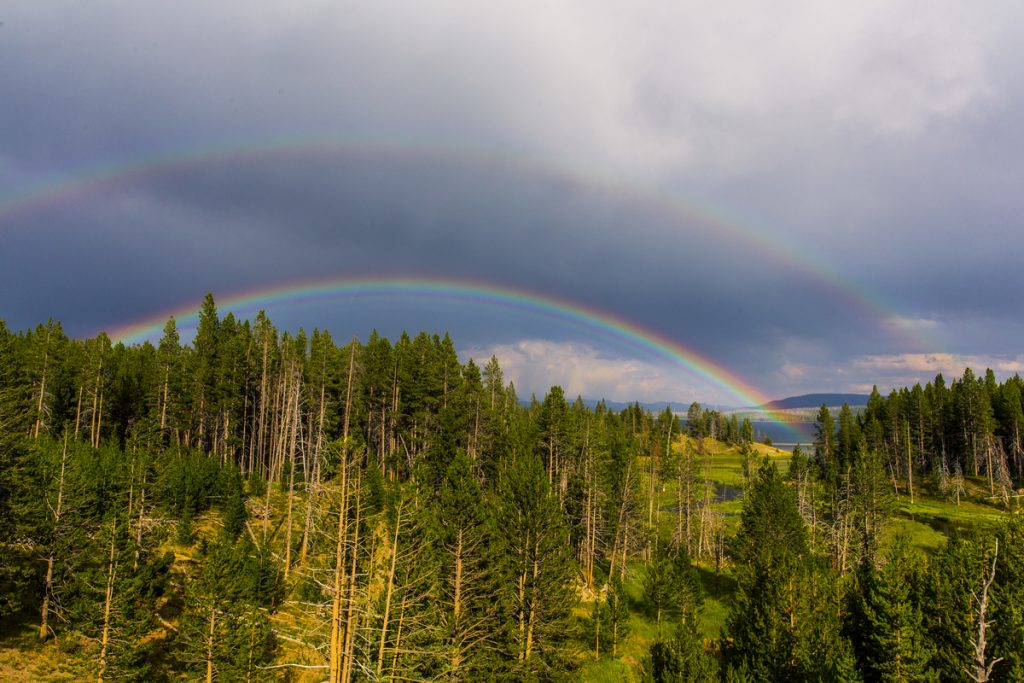 the miracles of a rainbow promise of God