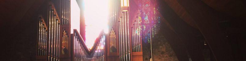 an organ project update