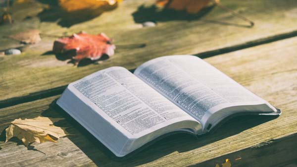 The Book of Acts Connect Group with Ekkehardt Mueller